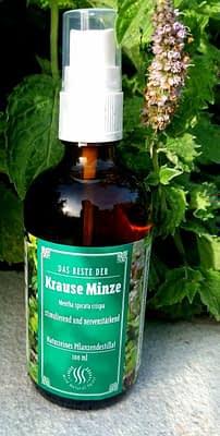 Krause Minze Hydrolat