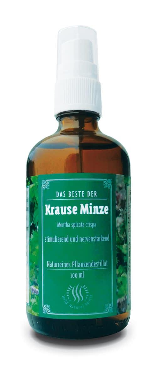 Kräuteressenz Krause Minze