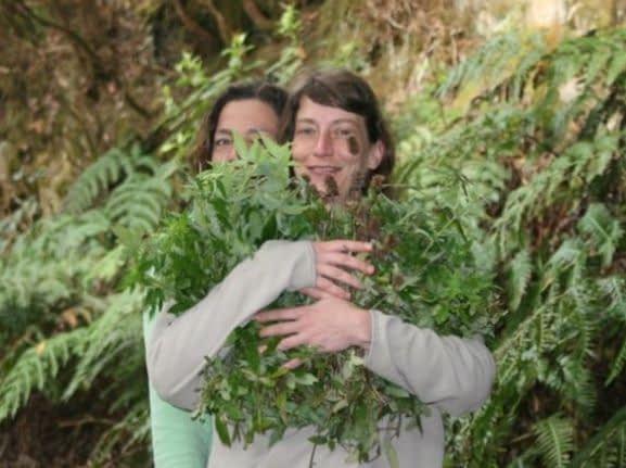 Pflanzen als Begleiter